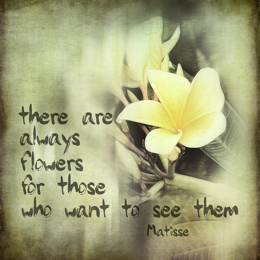 inspirational matisse quote photograph by ann powell