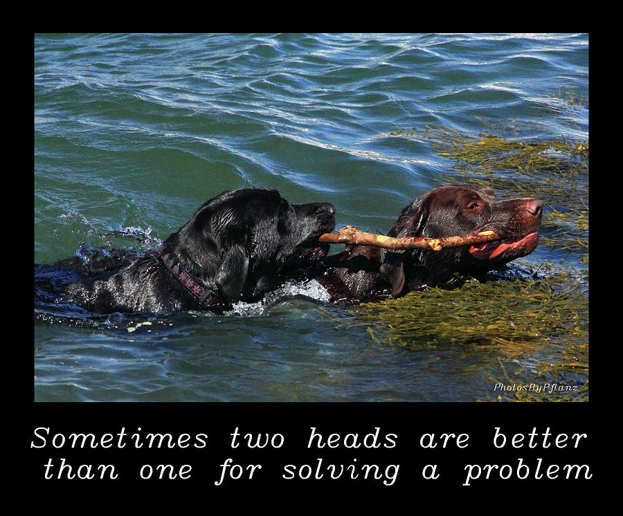 Inspirational Photograph - Inspirational-two Heads by Brian Pflanz