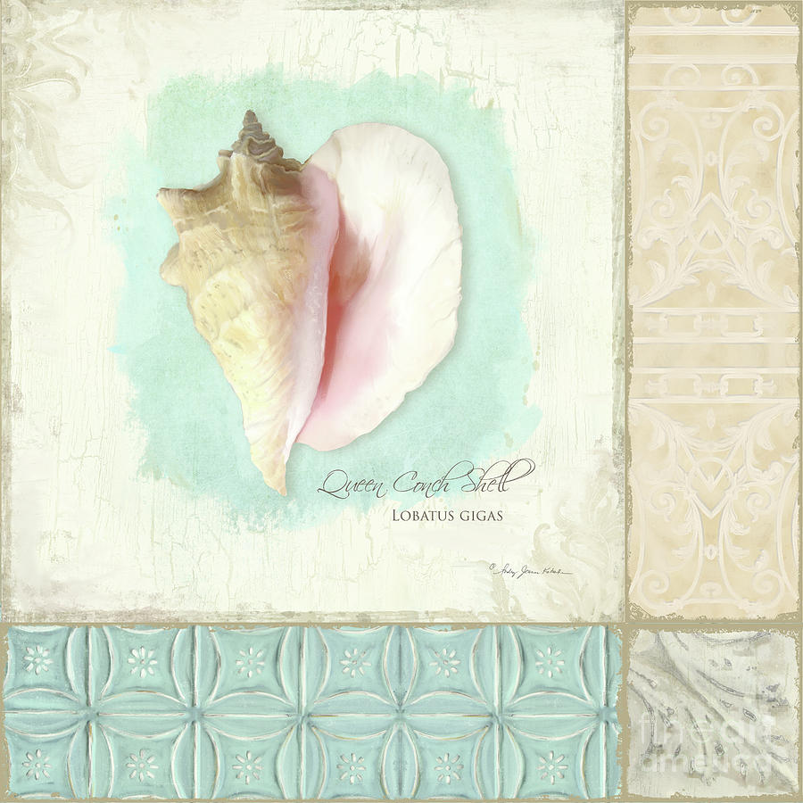 Queen Conch Shell Painting - Inspired Coast Collage - Queen Conch Shell Tile Patterns by Audrey Jeanne Roberts