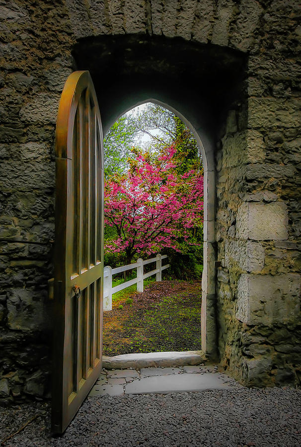Ireland Photograph - Into Irish Spring by James Truett
