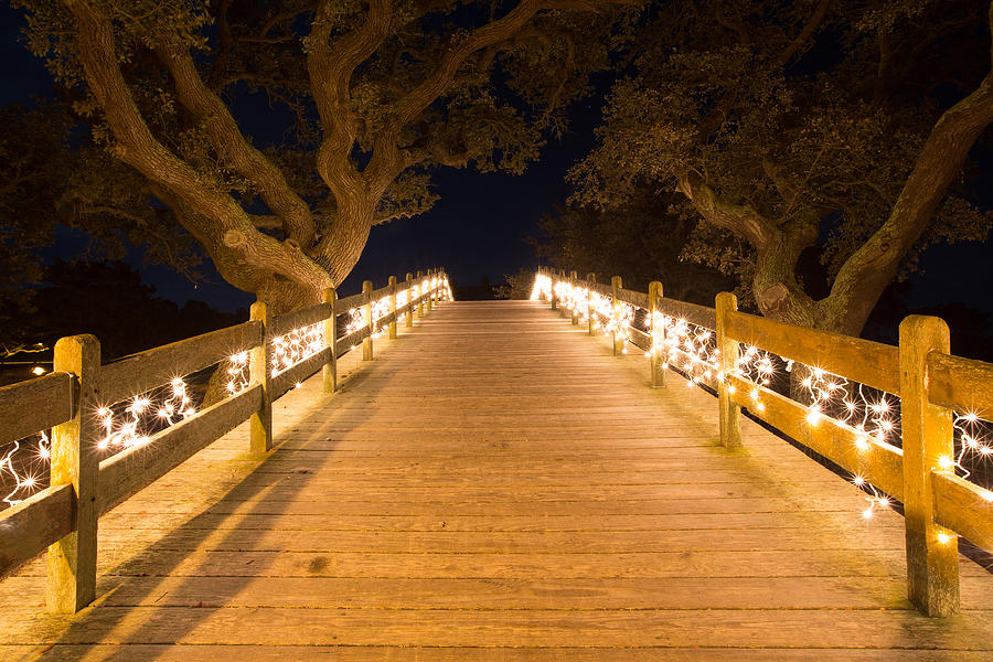 Boardwalk Photograph - Into by Jim Neal