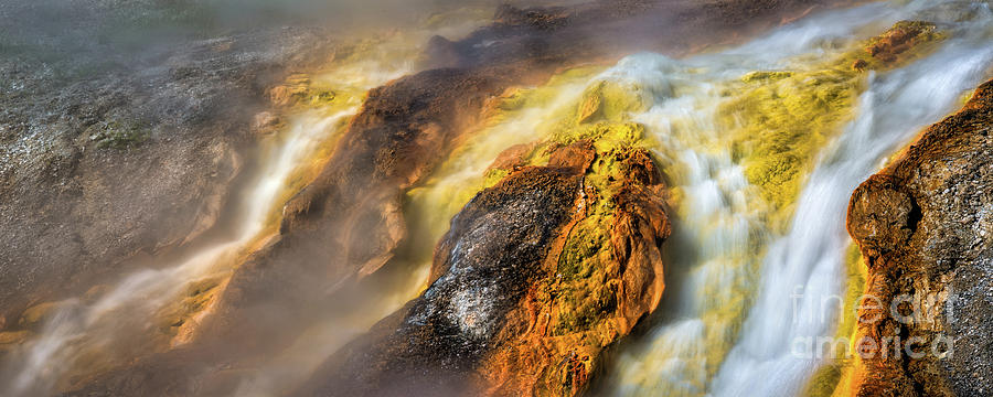 Into The Firehole by Anthony Michael Bonafede