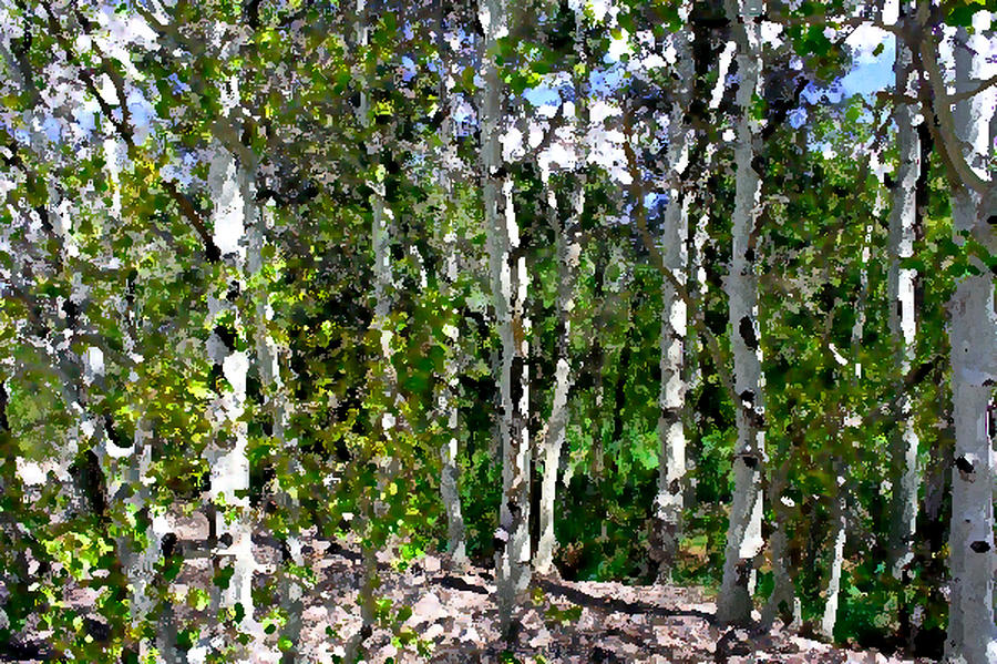 Landscape Photograph - Into the Forrest by Mary Gaines