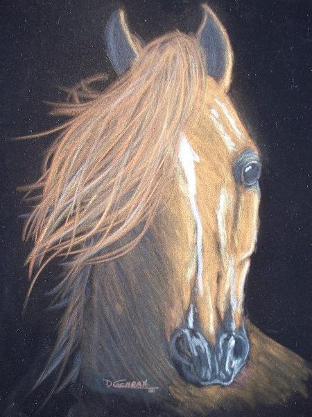 Horse Painting - Into The Light by Diana Cochran