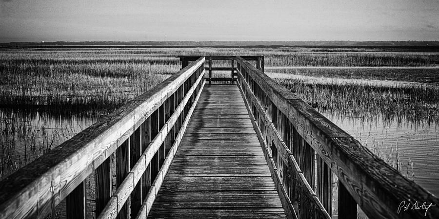 Beaufort County Photograph - Into The Marsh  by Phill Doherty