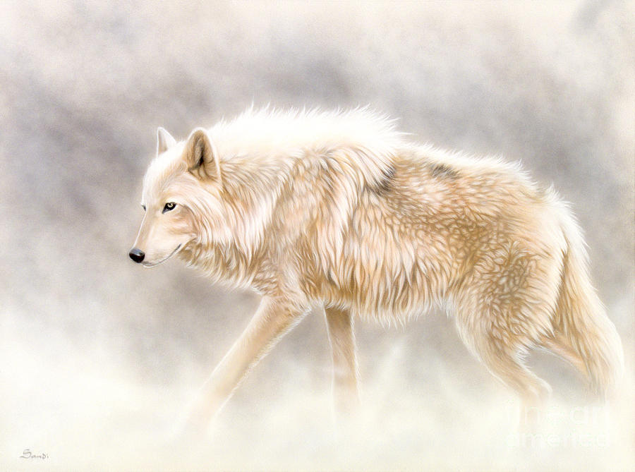 White Wolf Painting - Into The Mist by Sandi Baker