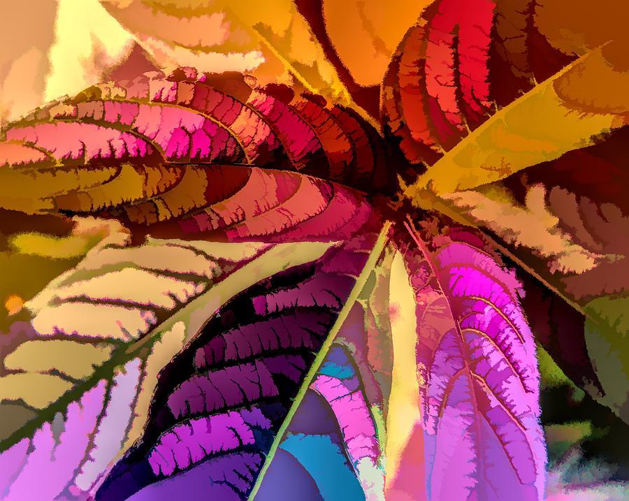 Graphic Design Digital Art - Into The Rainbow by Heidi Fickinger