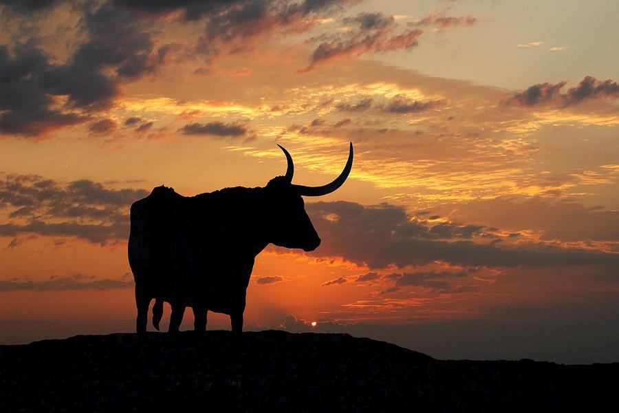 Sunset Photograph - Into The Sunset by Robert Anschutz