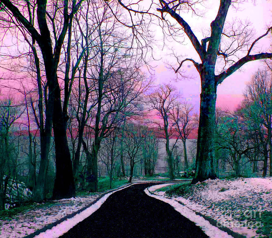 Into the Woods by Amaryllis Leon