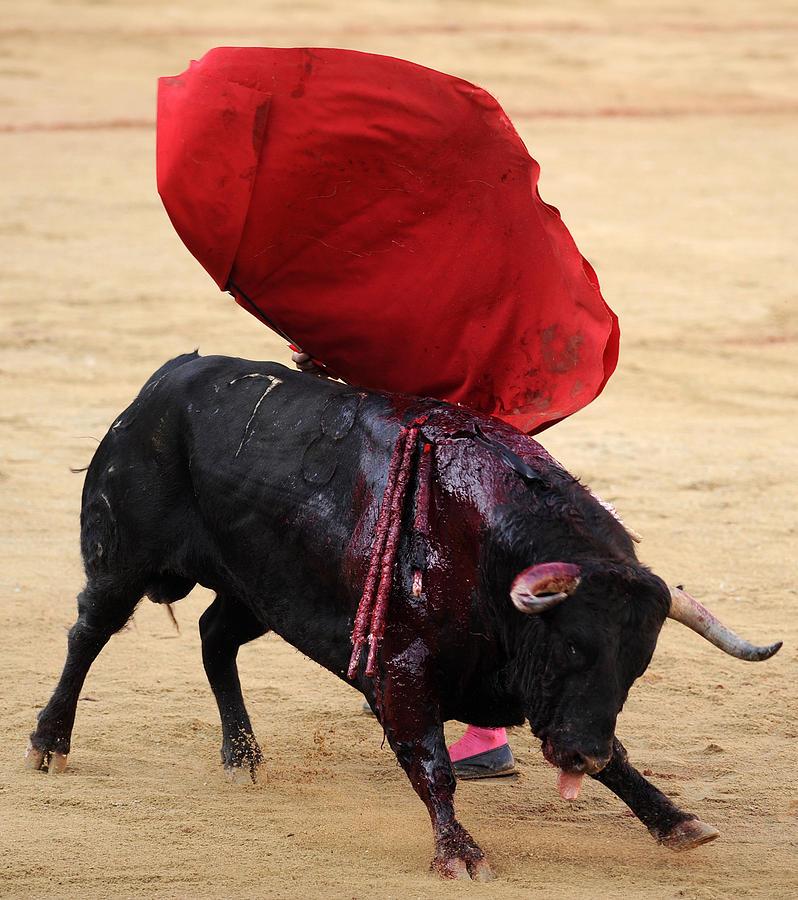 Spain Photograph - Invisible Matador by Rafa Rivas
