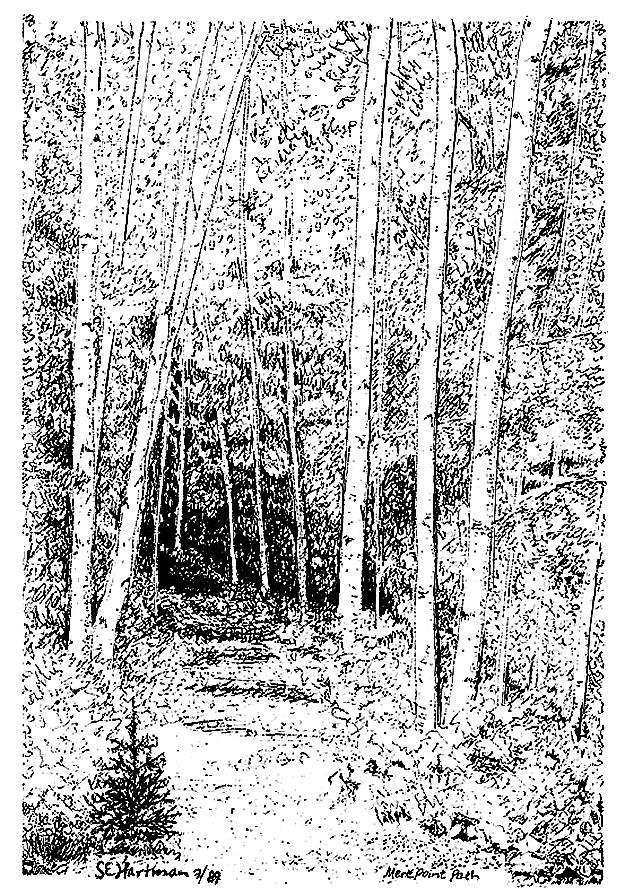 Invitation To A Walk Drawing by Sue Hartman