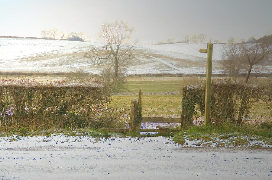 Color Photograph - Invitation To A Winter Walk by Aleck Rich Seddon