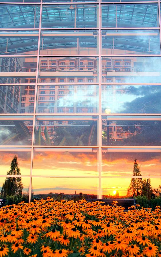 Architecture Photograph - Involved With The World by Mitch Cat