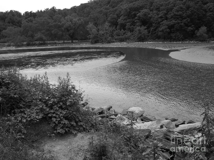 Inwood Hill Park 9A by Amaryllis Leon