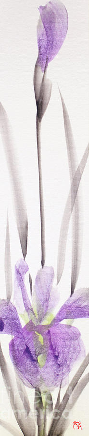 Iris 12050017-2FY by Fumiyo Yoshikawa