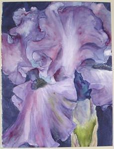 Iris Painting - Iris 18 by Diane Ziemski