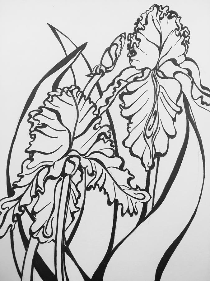 Iris by Mastiff Studios
