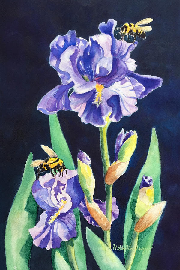 Iris and Bees by Hilda Vandergriff