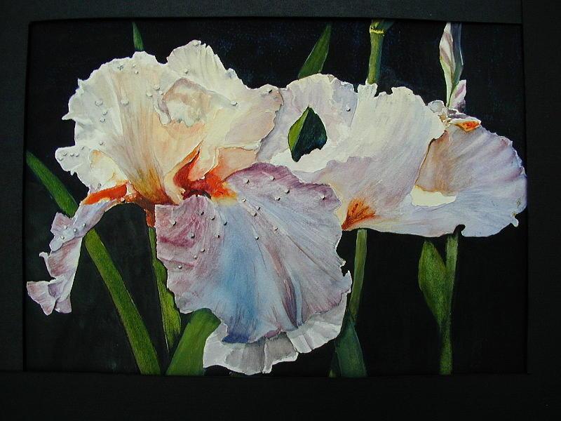 Flowers Painting - Iris by Dwight Williams