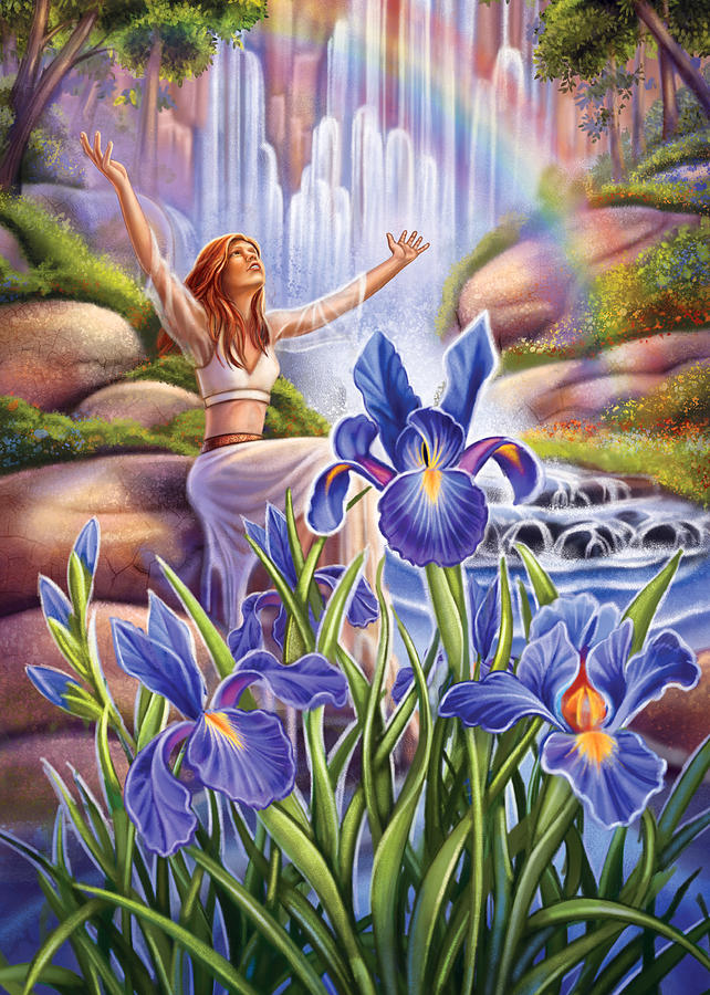 Iris Painting - Iris - Fine Tune by Anne Wertheim