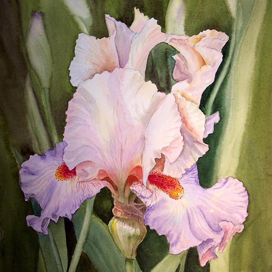 Iris Flower Painting By Irina Sztukowski
