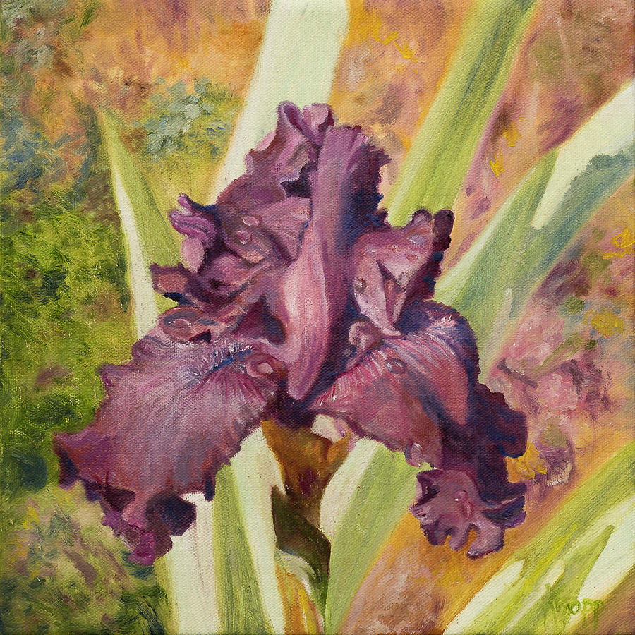 Iris Flower by Kathy Knopp