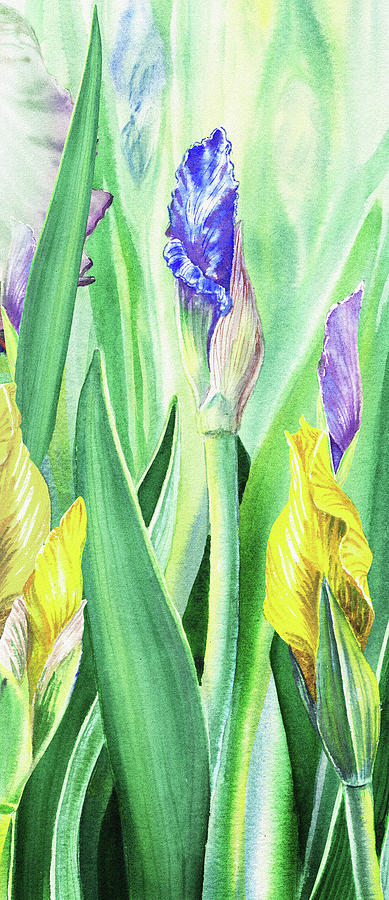 Iris Flowers Olympic Torches Painting
