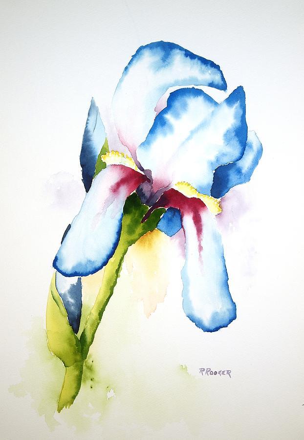 Iris Painting - Iris II by Richard Rooker