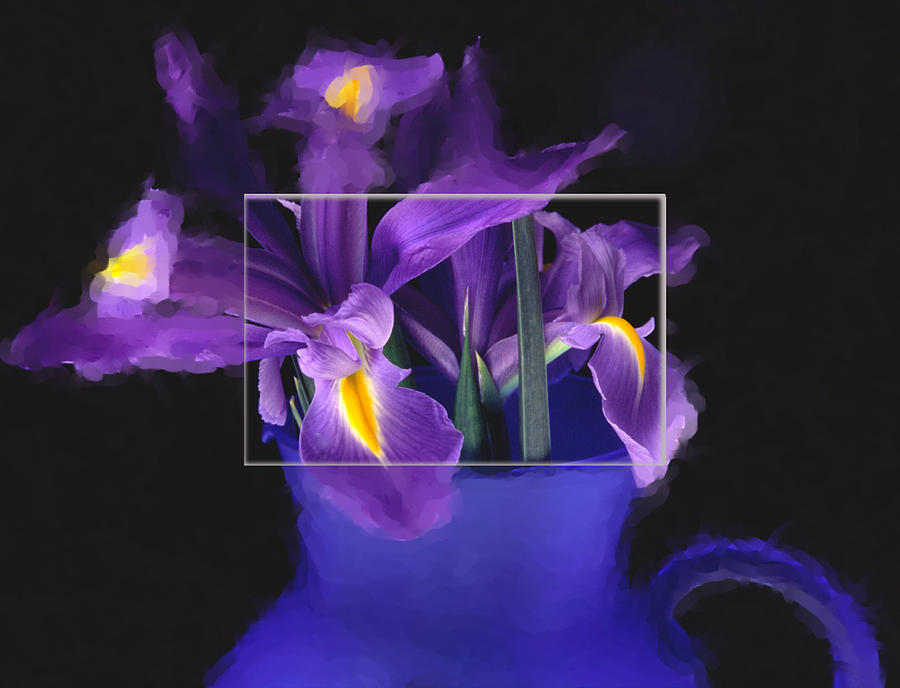 Iris In Blue Picture Photograph by Daniel D Miller
