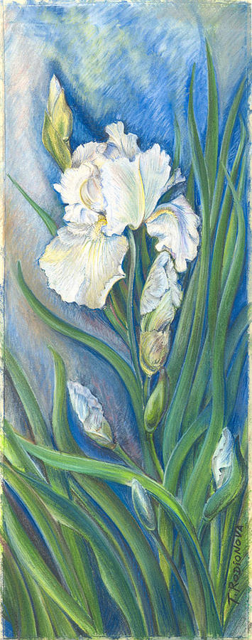 Still Life Painting - Iris In Blue by Tatiana Rodionova