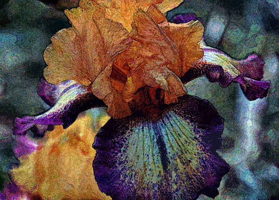 Iris Photograph - Iris Intimacy by Angelina Vick