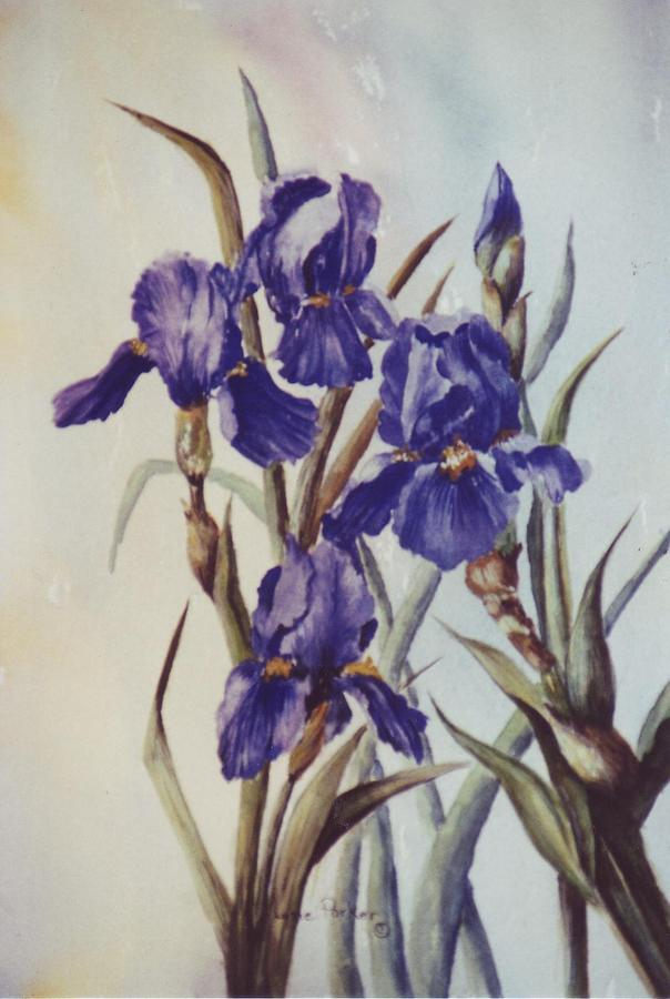Purple Painting - Iris by Lynne Parker