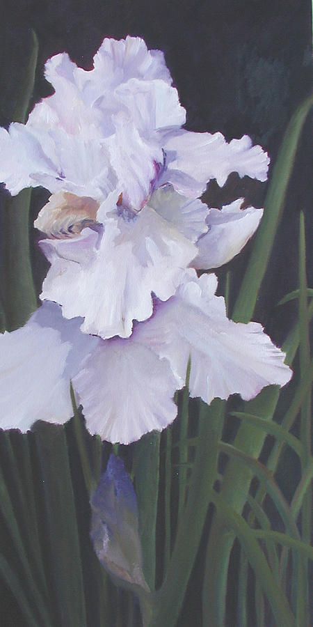 Floral Painting - Iris Night by Marcy Silverstein