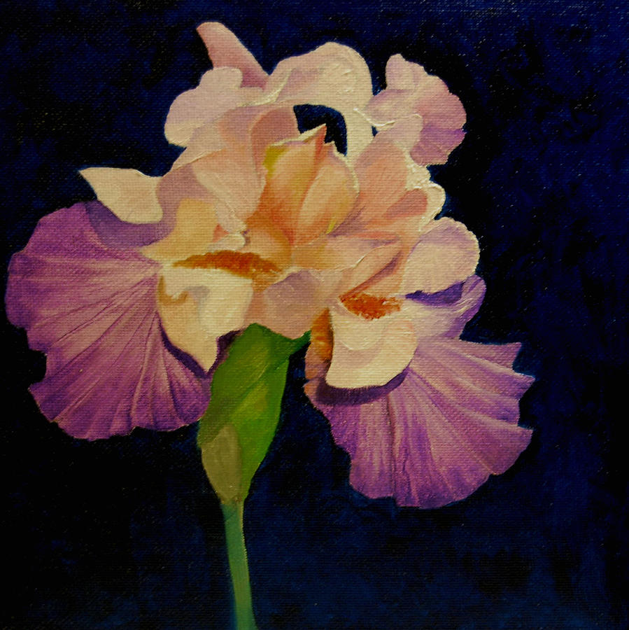 Floral Painting - Iris by Peggy Guichu