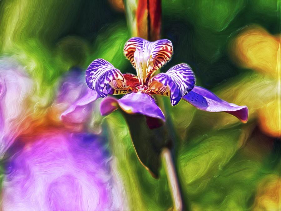 Iris Versicolor Digital Art by Doctor MEHTA