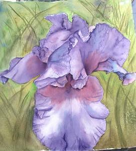 Iris Painting - Iris20 by Diane Ziemski