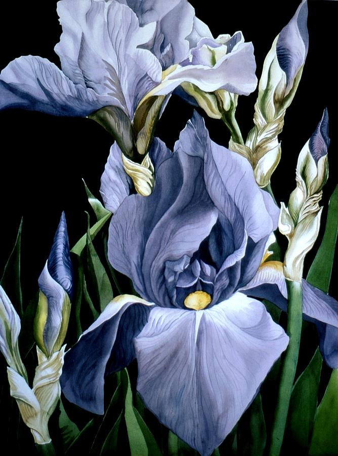 Garden Painting - Irises In Blue by Alfred Ng
