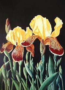 Irises In The Dark Painting by Dave Acton