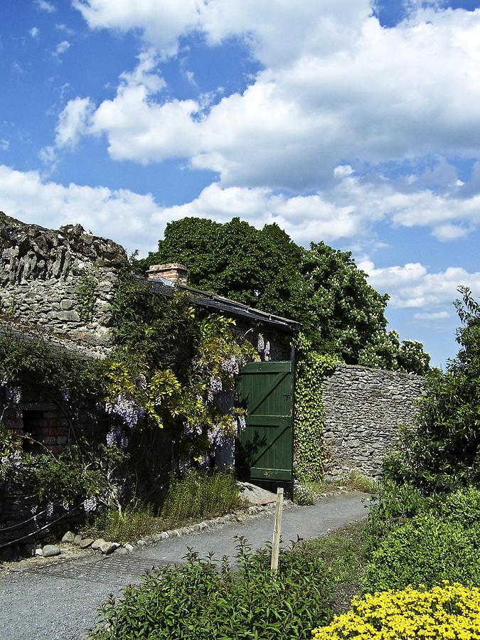 Irish Photograph - Irish Garden County Clare by Teresa Mucha