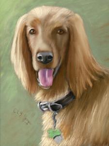 Dog Painting - Irish Setter by Elizabeth Jones