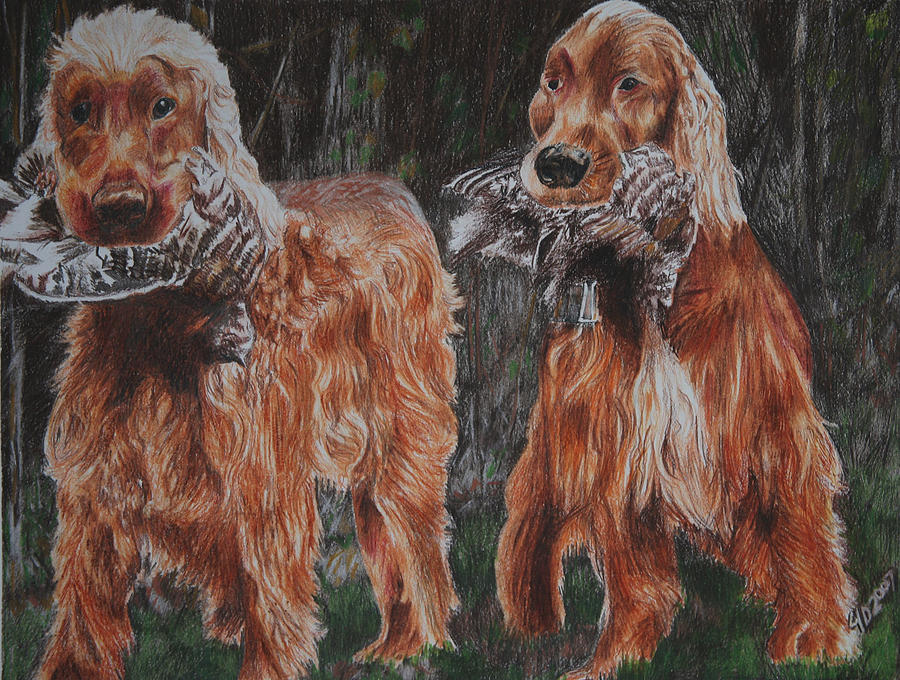 Dogs Drawing - Irish Setters by Darcie Duranceau