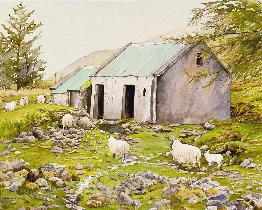 Irish Sheep Farm by Brenda Beck Fisher