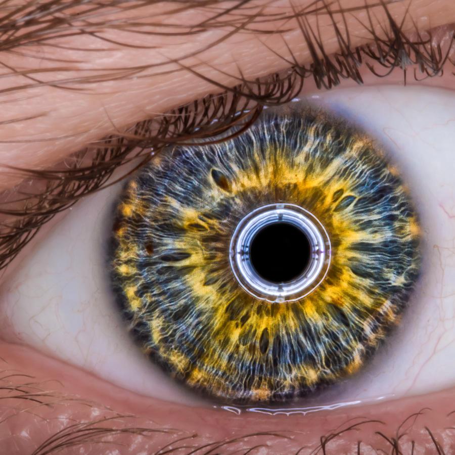 Eye Photograph - iRobot Eye v2.o by TC Morgan