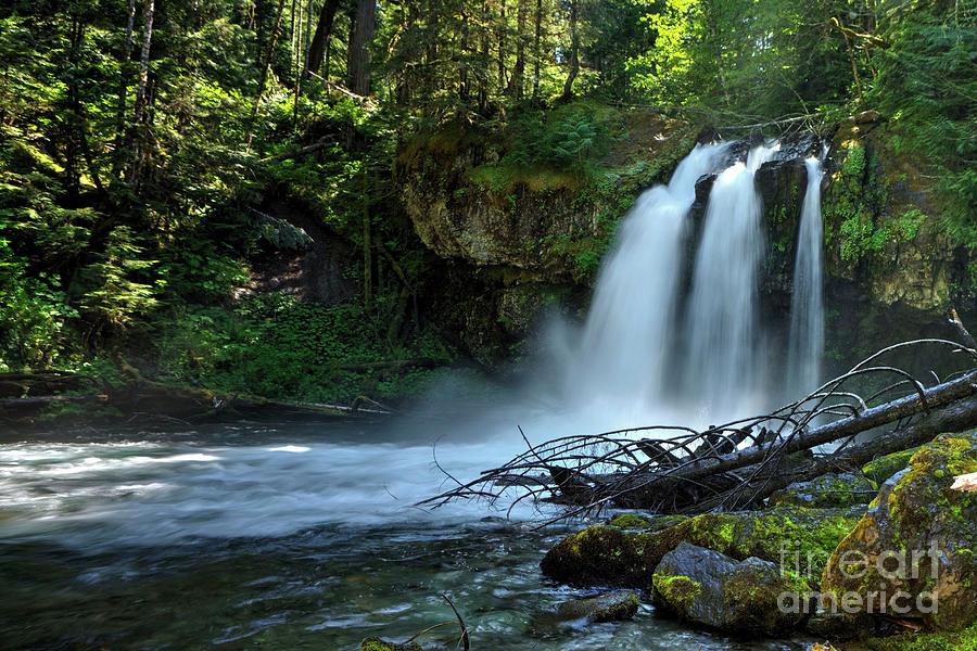 Waterfall Photograph - Iron Cross Falls by Rick Mann