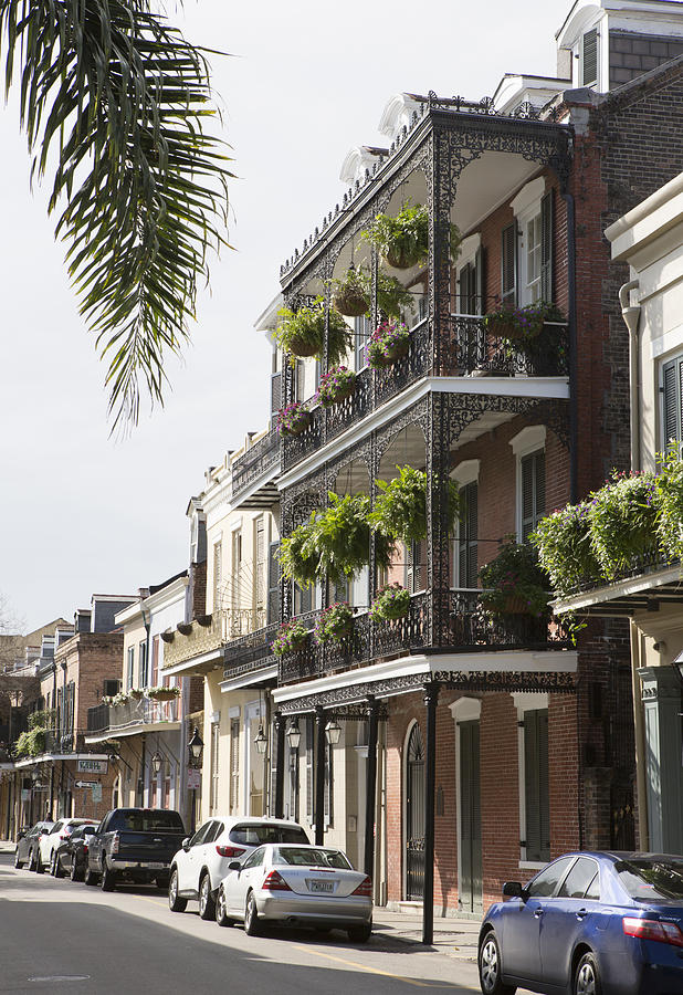 Iron Filigree Balconies in French Quarter by Gregory Scott