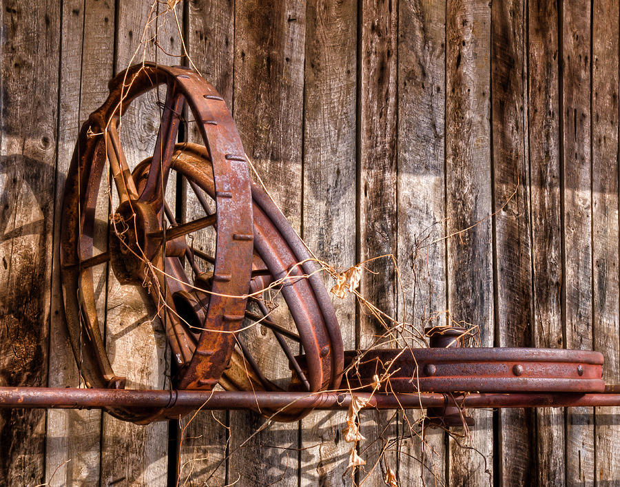 Still Life Photograph - Iron by Ron  McGinnis