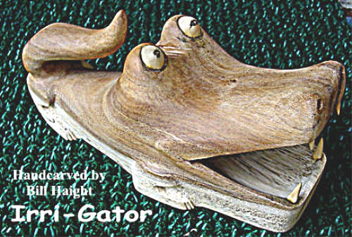Florida Sculpture - Irri-gator by Bill Haight