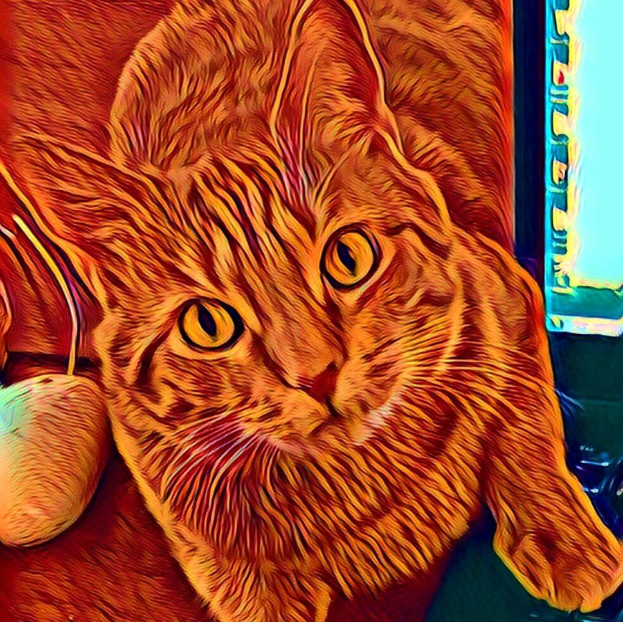 Ginger Cat Digital Art - Is There A Mouse In The House? by Gina Callaghan