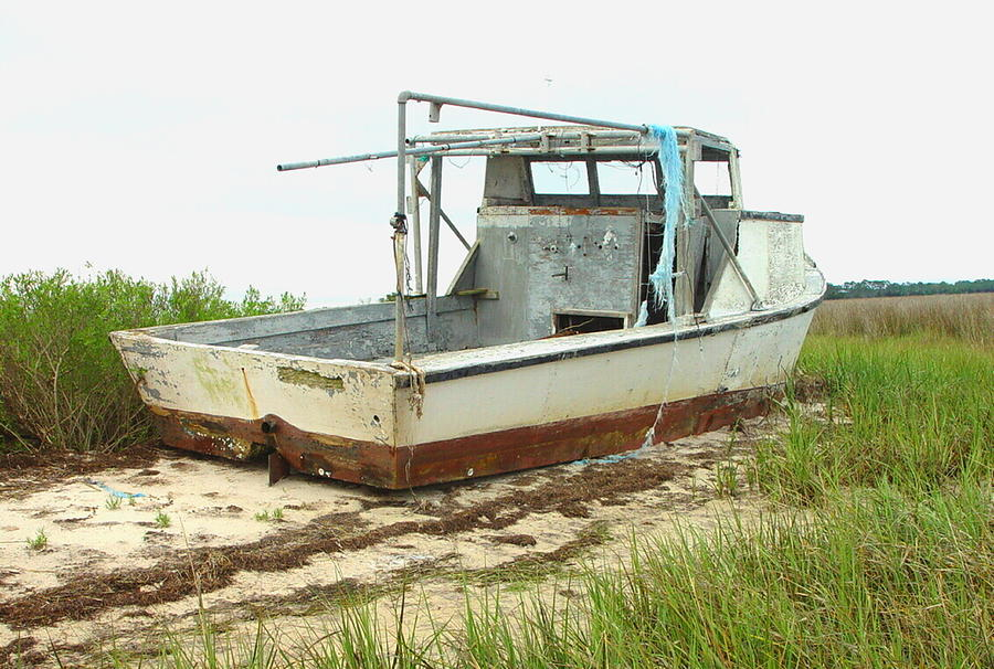 Boat Photograph - Island Boat by Debbie May