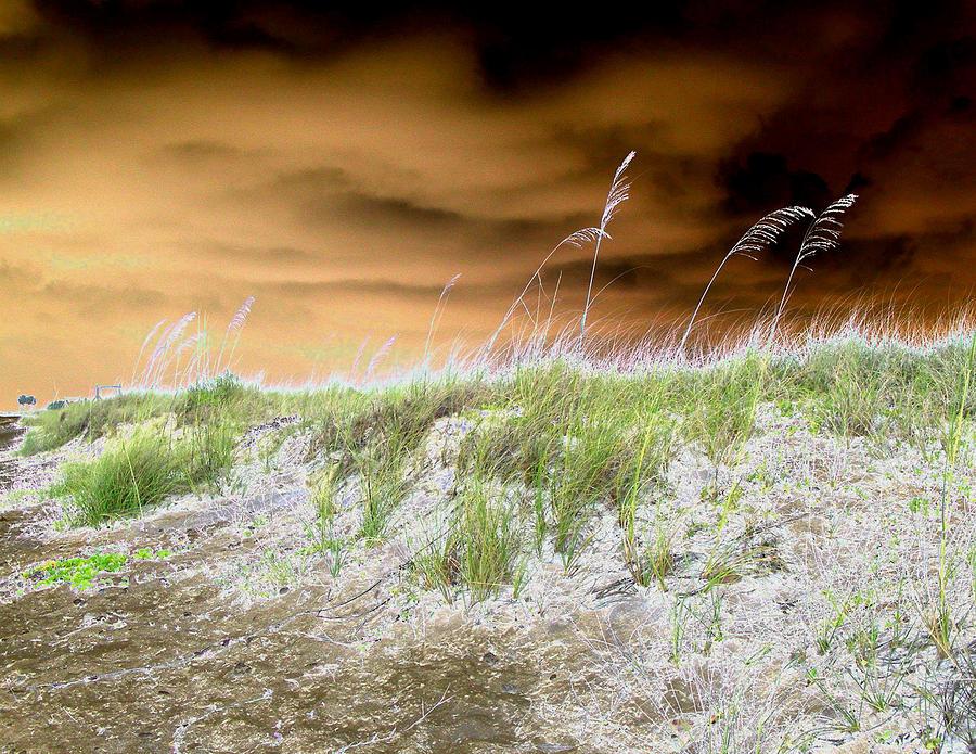 Beach Digital Art - Island Dune by Peter  McIntosh